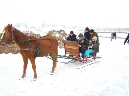 Półkolonie zimowe 2009