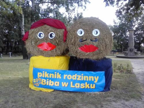 ok biba20153